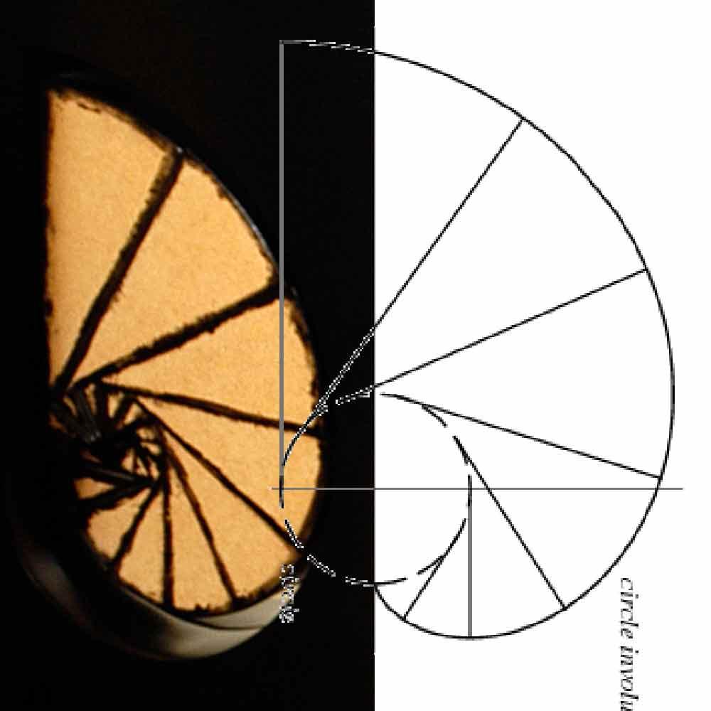 Genesis: object John Kersten